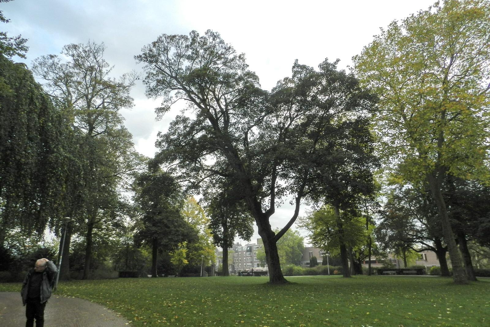 nijmegen-valkhofpark-10